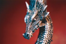 Photography PERSONAL (Dragon 02)