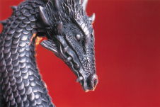 Photography PERSONAL (Dragon 01)